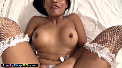 Ladyboy, Asian gay, Ladyboy anal, Anal pov, Gay asian, Shemale barebacked