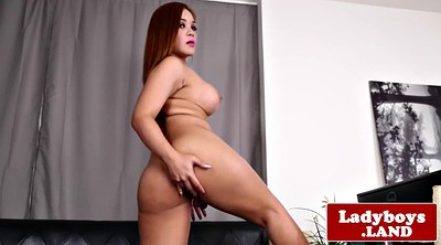 Curvy, Asian solo, Ladyboy solo, Asian shemale, Solo shemale, Solo ladyboy