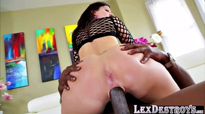 Bbc, Lexington steele, Lexington, Audition, Dolly