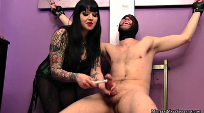 Torture, Mistress t, Strapon man