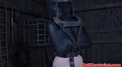 Whipping, Whip, Humiliation
