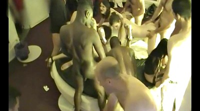 Swinger party, Camera, Bull