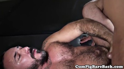 Piercing, Bears, Hairy mature, Gay bears, Gay bear, Hairy masturbate
