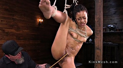 Caning, Spanks, Hogtied, Caned, Hogtied fuck, Spank and fuck