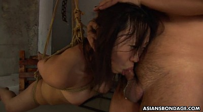 Asian bdsm, Tied asian, Rope