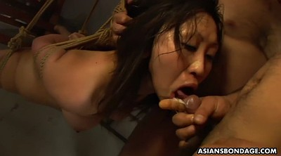 Bdsm japanese, Tied up, Japanese deep, Asian tied, Bdsm asian, Sperm