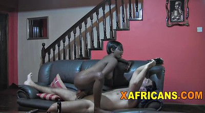 African, Black tits
