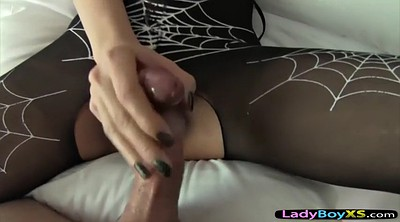 Ladyboy, Blacked, Asian anal, Shemales fucking, Asian pantyhose, Shemale pantyhose