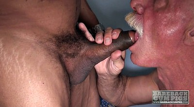 Daddy gay, Gay matures