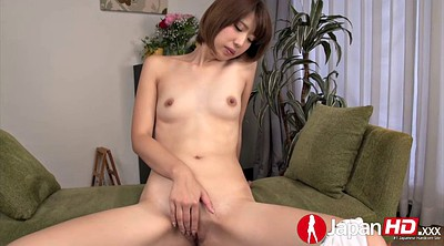 Japanese swallow, Hairy asian