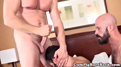 Bear gay, Gay bear, Group masturbation, Blow