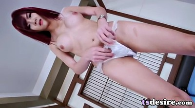 Asian shemales, Asian tranny