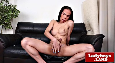 Ladyboy, Big dick shemale, Asian ladyboy