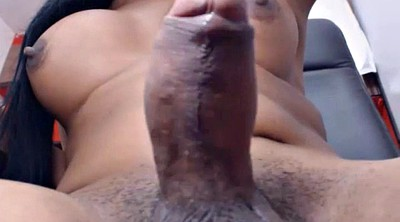Tranny, Big cock tranny, Shemale huge