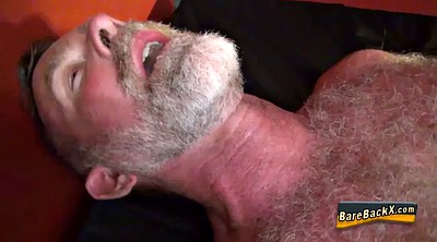 Bear, Gay bear, Bear gay, Mature hd
