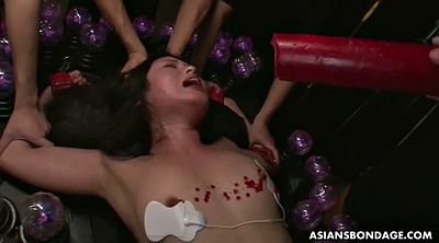Japanese bdsm, Torture, Wax, Japanese dildo, Electric