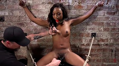 Hard sex, Finger, Hard spank, Chubby hairy, Black hairy, Black cum
