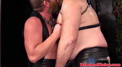 Anal, Leather, Chubby bear