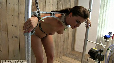 Torture, Close up, Torture and torture, Device, Bdsm milking, Milk tits