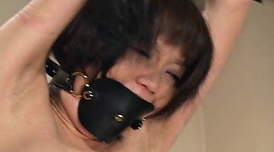 Whip, Whipping, Whipped, Tied, Japanese bondage, Japanese tied