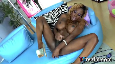 Tgirl, Black shemale, Shemale cumshot, Ebony solo, Big ass solo, Black masturbation