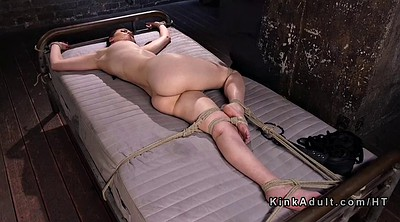 Hogtied, Caning, Into pussy, Caned, Hogtie