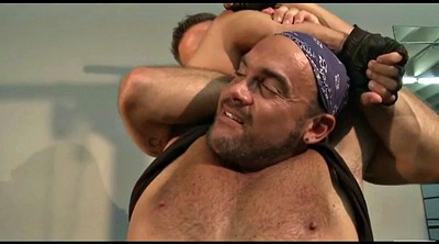 Fight, Fighting, Cat fight
