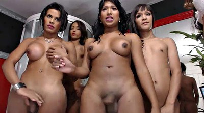 Webcam shemale, Shemale orgy, Shemale milf, Shemale webcam