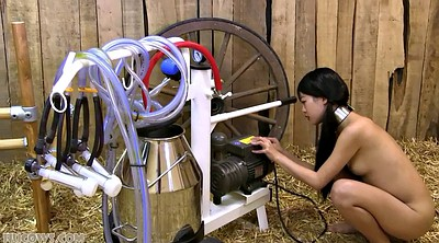 Milk, Milking, Japanese bondage, Asian bdsm, Japanese milk, Asian slave