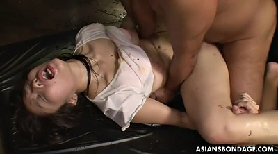 Japanese bondage, Water, Japanese bdsm, Creampie hairy