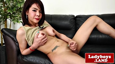 Ladyboy, Asian solo