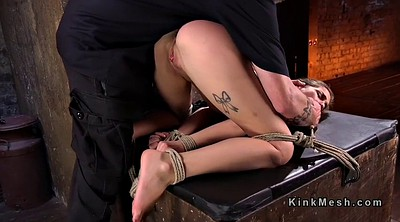 Whip, Hogtied, Whipping, Whipped