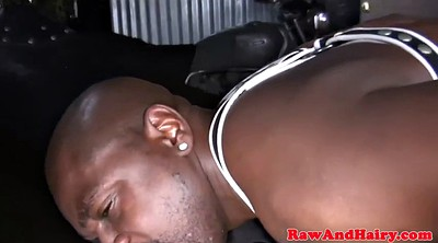 Mature, Leather, Chubby gay, Black gay, Bears, Black bear