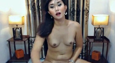 Webcam asian, Asian webcams, Suck, Shemale asian