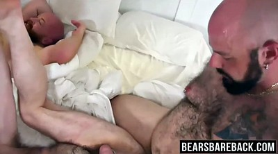 Room, Gay cock, Gay bear, Big gay, Bear gay