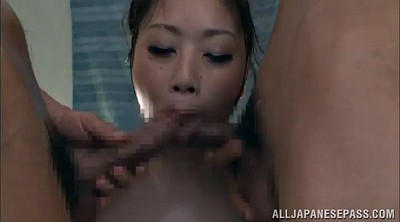 Oil, Asian hairy