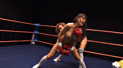 Fight, Lesbians fight, Cats, Boxing