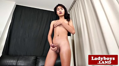 Hard, Asian shemale, Asian ladyboy