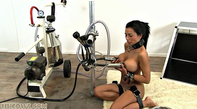 Machine bdsm, Bdsm machine, Toys, Tit milk, Slave milking, Sex slave