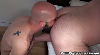 Hairy bear, Gay feet, Deep feet, Bears, Fat bear, Bbw feet