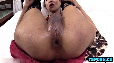 Hot, Double anal, Shemale double