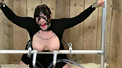 Milk, Tied up, Fat anal, Ebony bdsm, Dress, Tits milk
