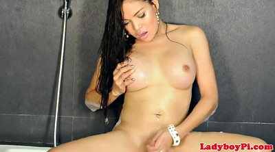 Ladyboy, Asian shemale, Shemale asian
