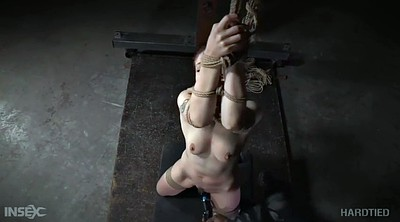 Tied, Bondage sex