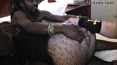 Group, Swinger, Bbw bbc, Swingers, Bbw group, Bbw bbc interracial