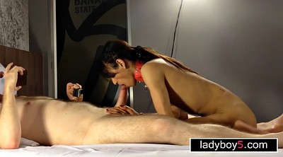 Asian, Ladyboy, Asian shemale