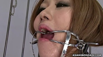 Japanese bondage, Japanese bdsm, Japanese bikini, Bdsm japanese, Japanese sucking, Japanese throat