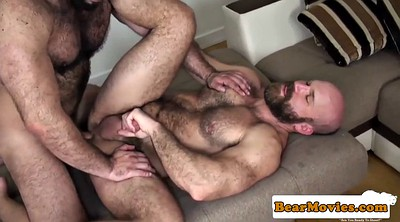 Gay bear fuck, Bear gay, Bear, Gay bear, Gay mature, Big bear