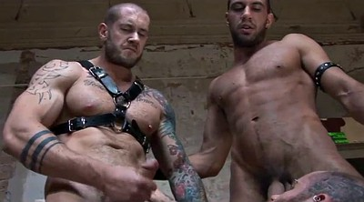 Muscle milf, Toy boy, Gay muscle