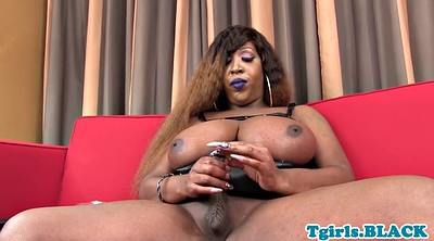 Tgirl, Shemale bbw, Bar